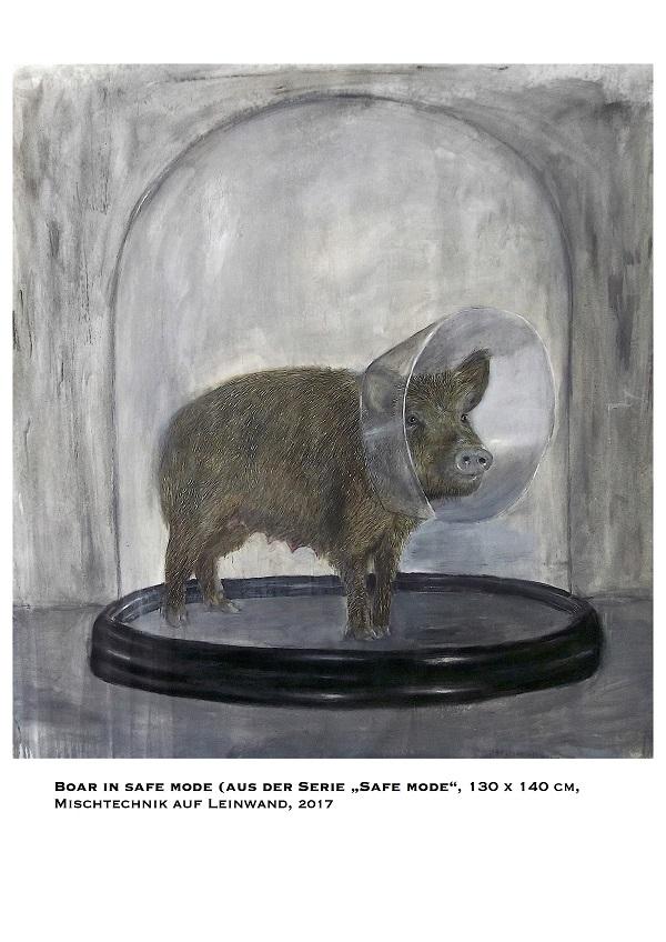 Boar in safe mode