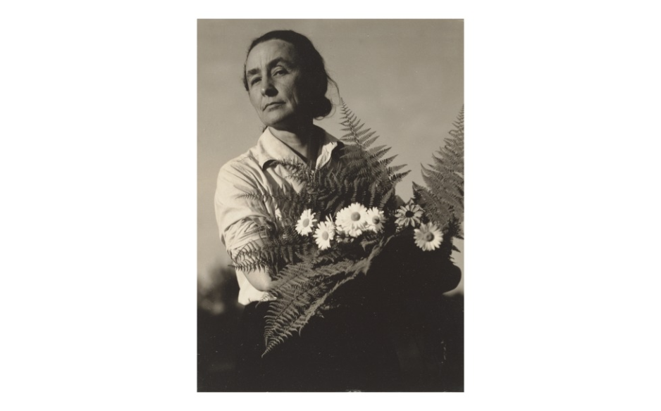 Alfred Stieglitz, Georgia O'Keeffe: A Portrait - With Flowers,  1934 .